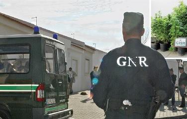 As 15 plantas apreendidas pela GNR de Vila Real de Santo António estavam a ser cultivadas em vasos, num terreno agrícola isolado